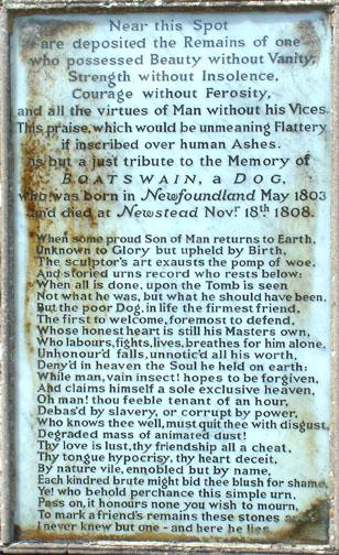 Lord Byron Newfoundland Dog